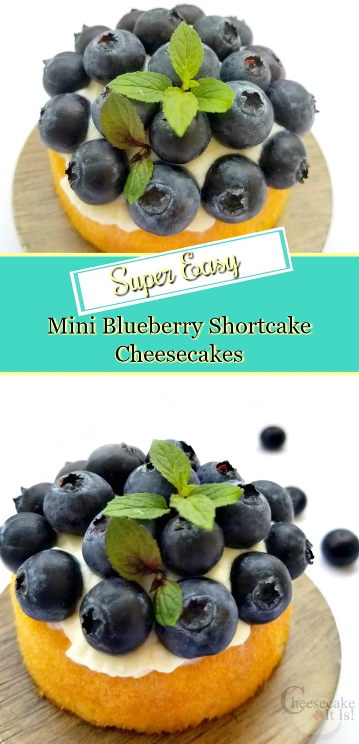 Mini blueberry shortcake cheesecakes one top and one at the bottom. Text overlay in the middle.
