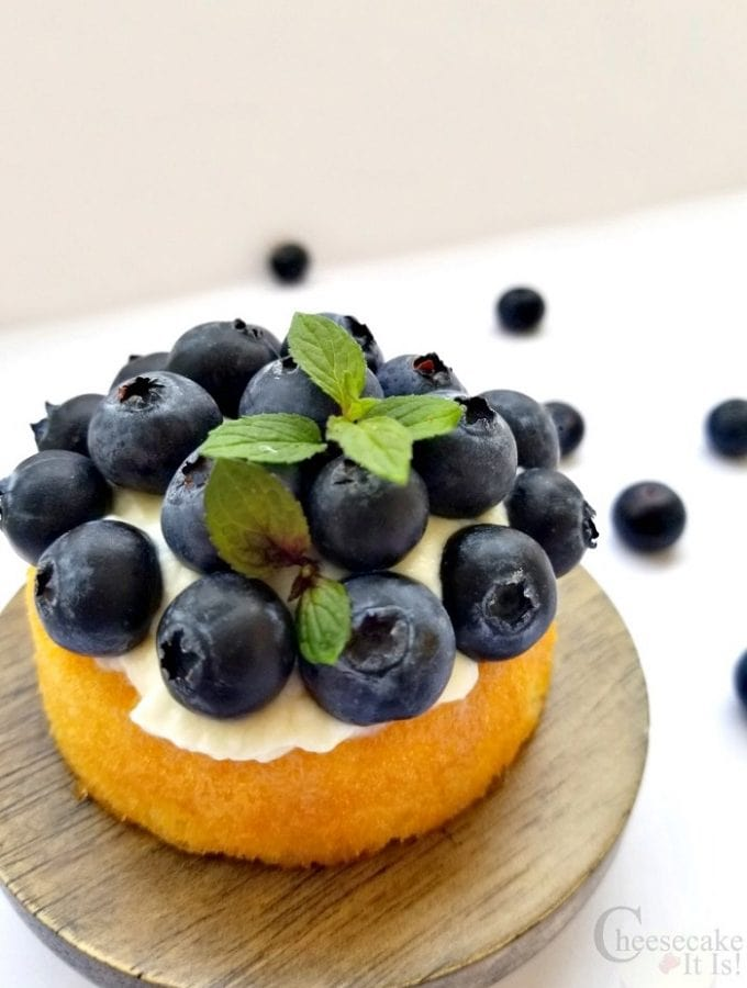 Single Blueberry Shortcake Cheesecake